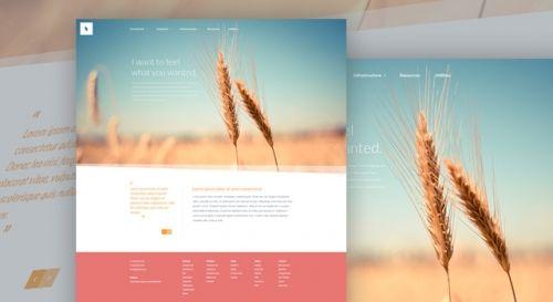 Organic – бесплатный PSD-шаблон для сайта