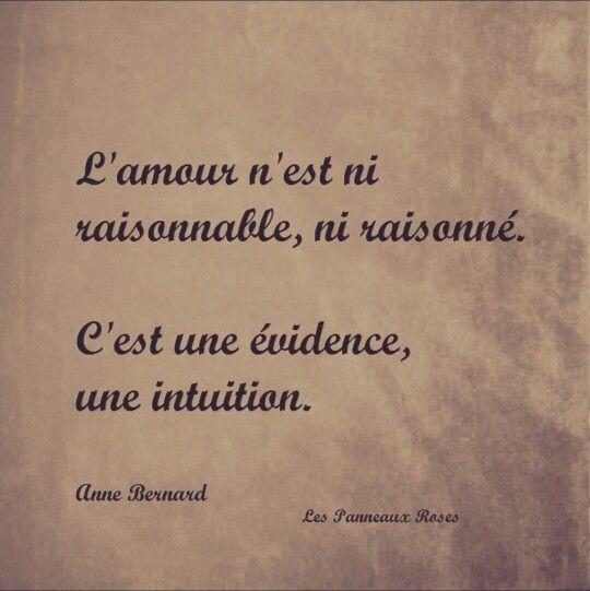 El amor no es razonable ni racional. Es obvio, una intuición   -   Love is neither reasonable nor rational. It is obvious, an intuition    -   L'amour n'est ni raisonnable, ni raisonné. C'est une évidence, une intuition
