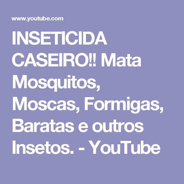 INSETICIDA CASEIRO!! Mata Mosquitos, Moscas, Formigas, Baratas e outros Insetos. - YouTube
