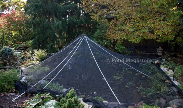42 best garden pond maintenance filters tips images on for Backyard pond maintenance