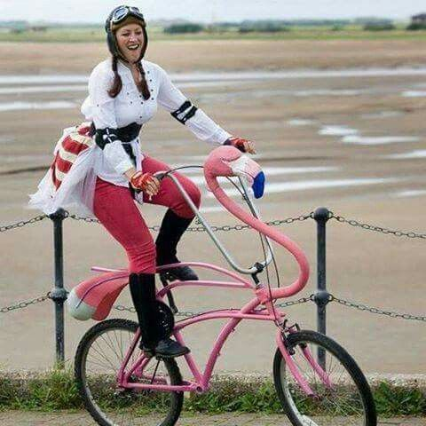 OMG! A Pink Flamingo Bike!