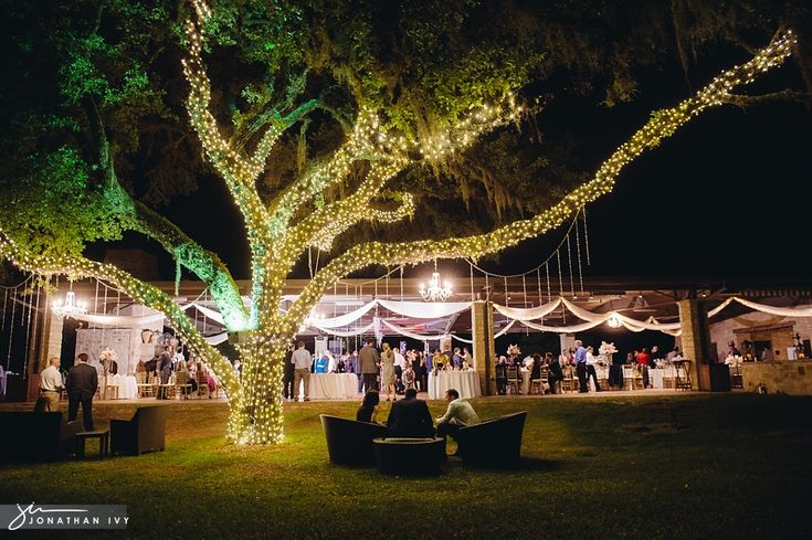 17 Best Images About Real Houston Weddings On Pinterest: 17 Best Images About Gorgeous Outdoor Weddings On