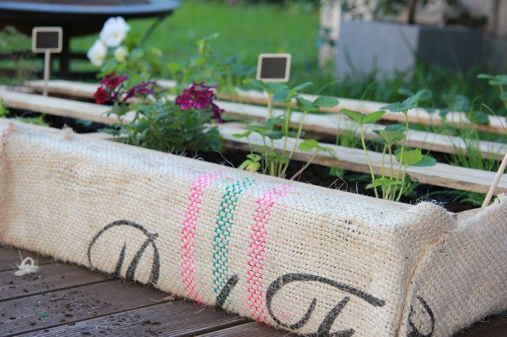 DIY Pallet garden wall