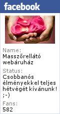 Callebaut Belga kakaóvaj pasztilla 0,5 kg. (étkezési) - Masszőröket munkájukhoz szükséges masszázskellékekkel ellátó masszőrellátó masszázsellátó webáruház. - webáruház, webshop