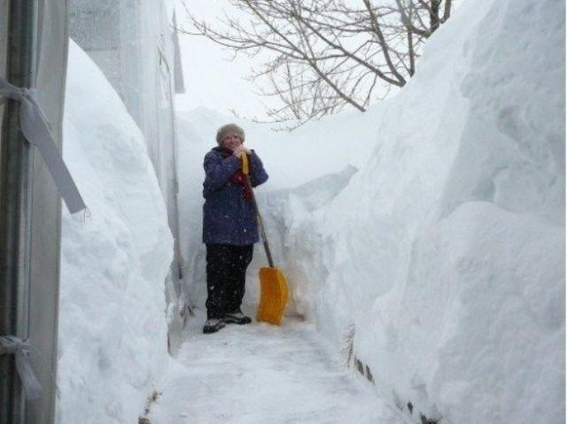 мяту сотейник, какие положено делать при фотографиях в снегу комплекс