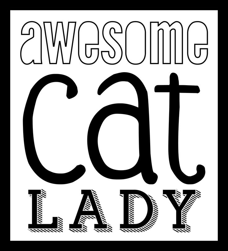 awesome cat lady