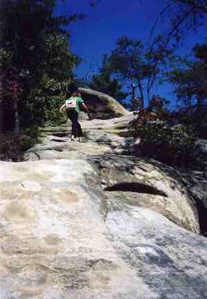 Indian Staircase, Red River Gorge, KY This is my favorite trail in the gorge