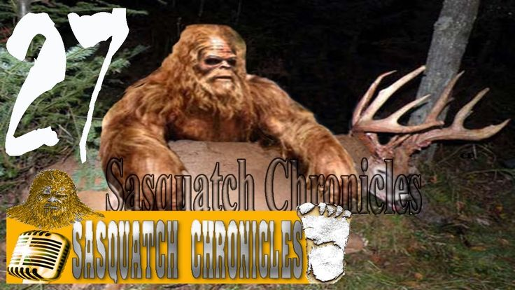 Bigfoot Hotspot Radio // SC EP:27 It's a TRAP! [Sasquatch Chronicles]