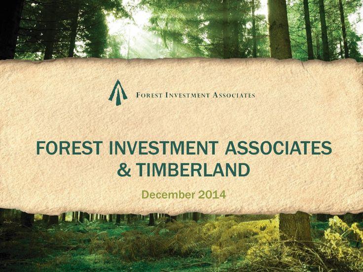 77 best Woodlands Graphic Design \ Illustration images on - example flyer