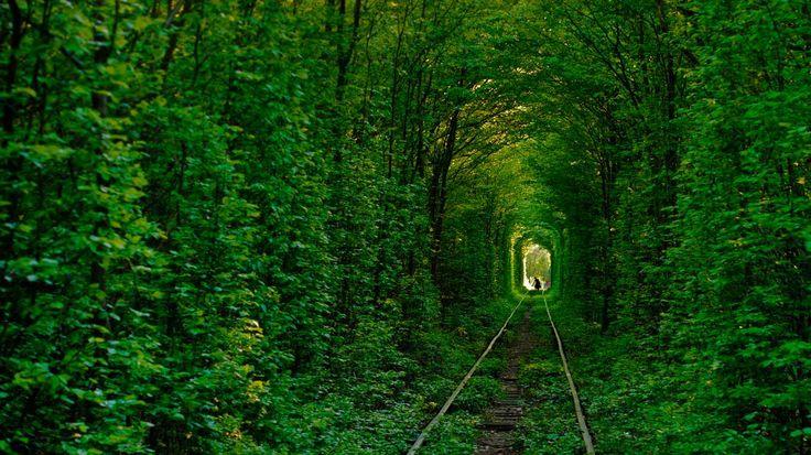 綠色隧道 - Google 搜尋