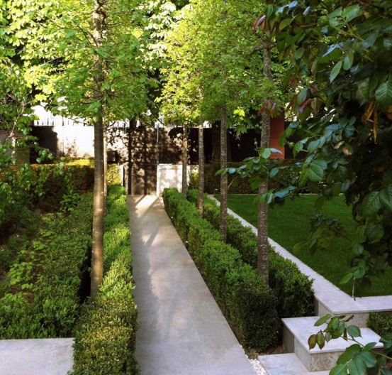 Minimalist landscaping slim trees bordered with a low square box plant hedge contemporary garden by julien decker of armandii