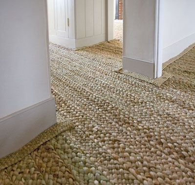Image result for seagrass carpet