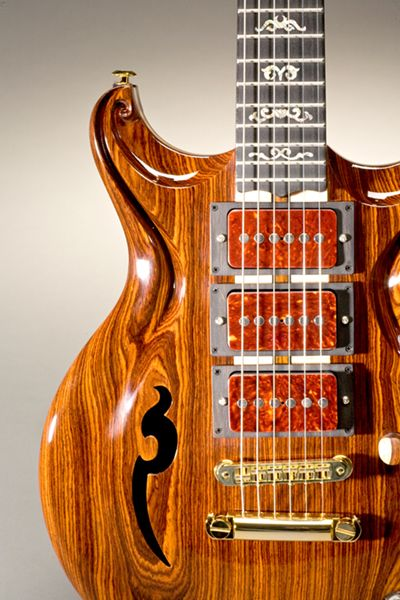 Scott Walker Custom Guitar - he makes some of the coolest looking guitars out there. I want one :)