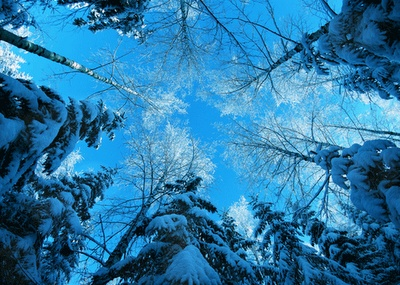 Best Free Winter Wallpapers:Computer Wallpaper | Free Wallpaper Downloads