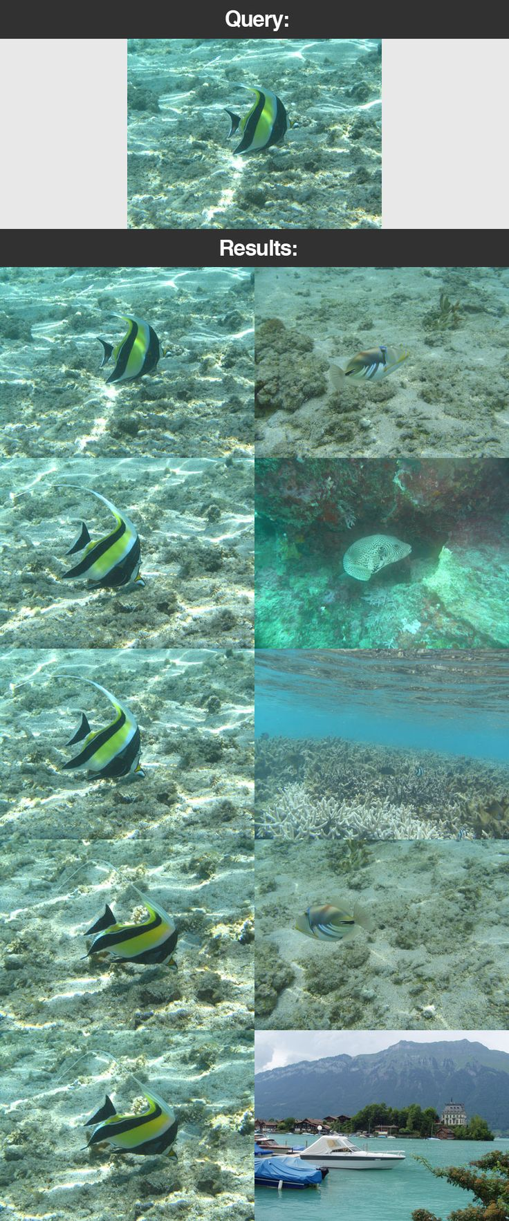 Figure 21: Once again, our image search engine is able to return relevant results. Thus time, of an underwater adventure.