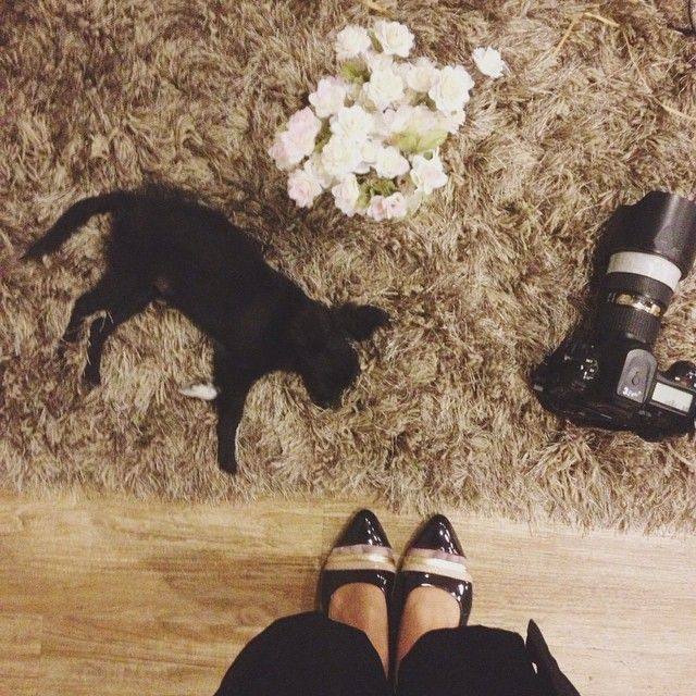 """""""I love flowers, photography, that cute little puppy, and of course the black CHANTAL on my feet."""" #odetteshoes #odetteotd from @irenesachli"""