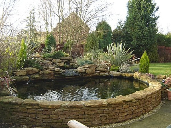 3160 best ponds images on pinterest water gardens pond for Raised koi pond ideas