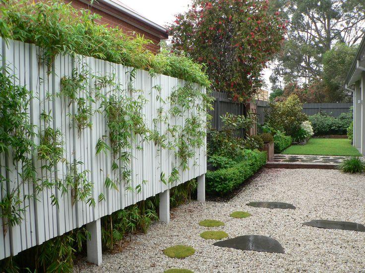 Timber screen,Bamboo,Bluestone stepping stones,Garden design. www.rpgardendesign.com.au