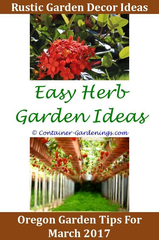 Hanging Basket Garden Ideas Cute Garden Decor Ideas Gargen Gardening
