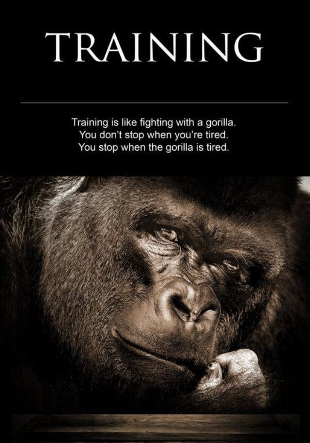 It S Up To You To Decide Who Wins You Or The Gorilla Strength