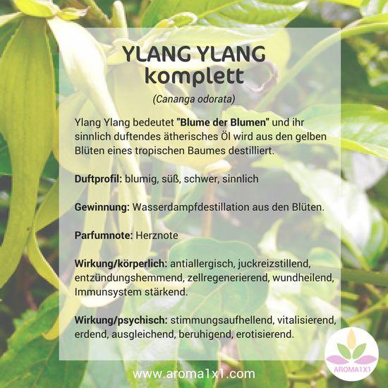 """Ylang Ylang bedeutet """"Blume der Blumen"""" und ihr sinnlich duftendes ätherisches Öl wird aus den gelben Blüten eines tropischen Baumes destilliert."""