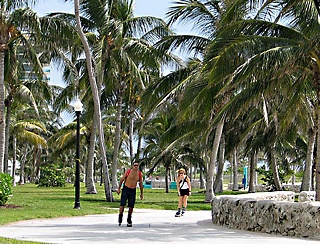 Lummus Park On South Beach Miami Florida