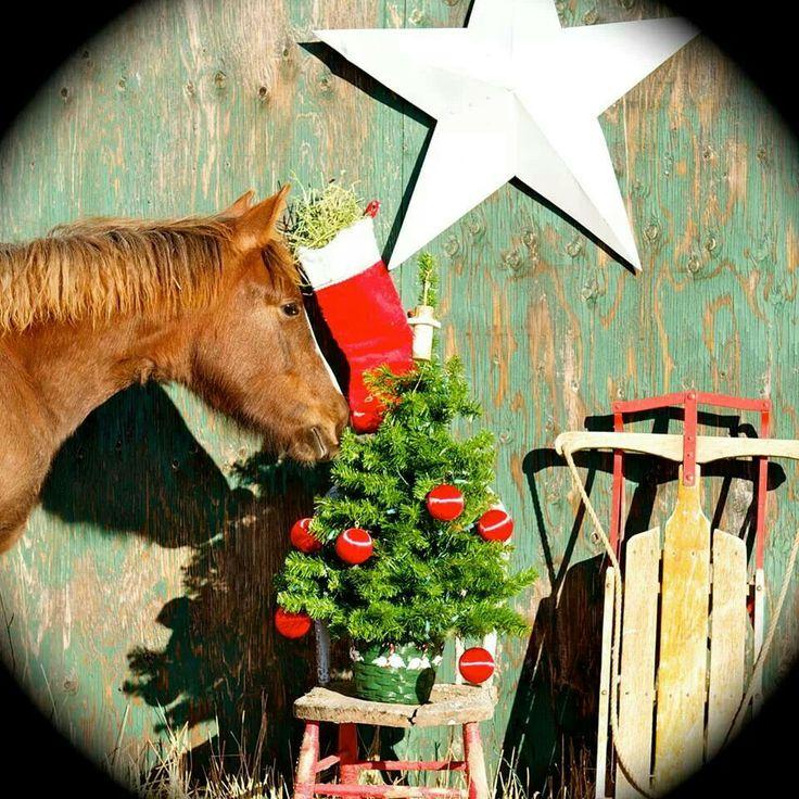 Em Valência foi onde meu cavalo se perdeu. E depois foi achado.