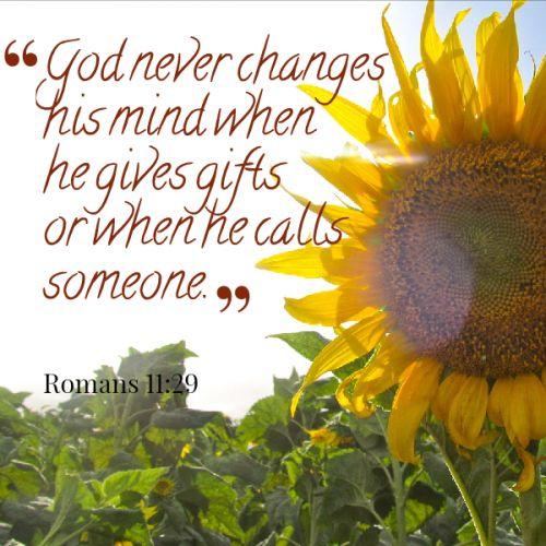 Romans 11:29 | Quotes | Pinterest | Roman, Scriptures and ...