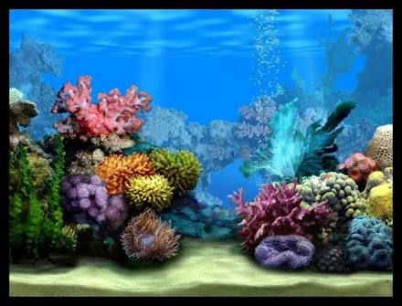 Image Result For Fishtank Background Printable Cartoon