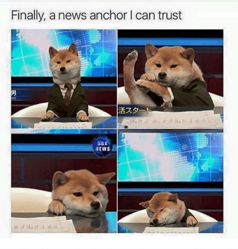 Finally a news anchor i can trust lol