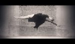 ARIANE MOFFAT // In Your Body on Vimeo