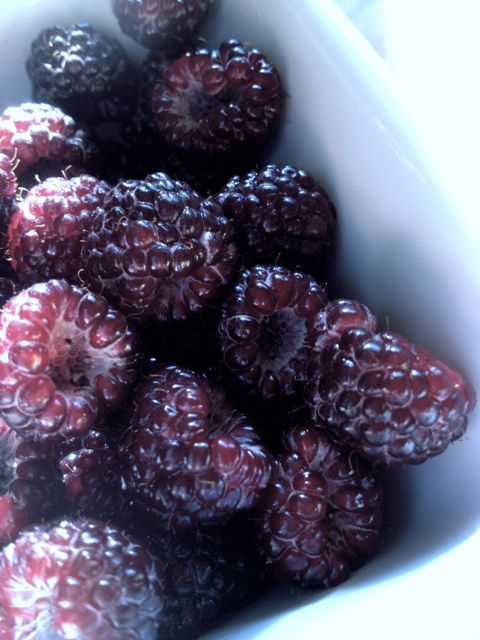 Black Raspberry Cobbler: Summer with a Spoon