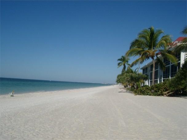 Vanderbilt beach in Naples. Dolphins just off the shore ...