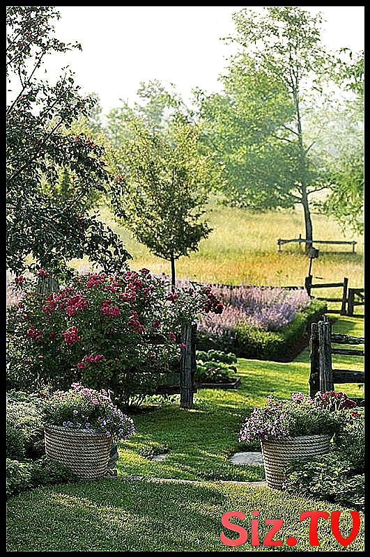 Pin On Landscaping Blog