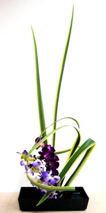 Orchid Arrangement With Ikebana Principles