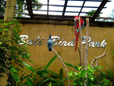 PERGIPEDIA  - Bermain Sambil Belajar Di Taman Burung Citra Bali ( Bali Bird Park ) . Taman Burung ...