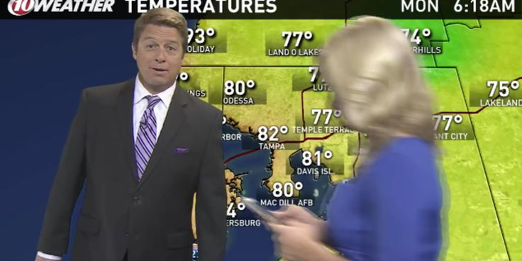 News Anchor Catching Pokemon Interrupts Live Weather Forecast