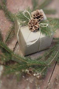 Yet another use of pinecones. Pretty and simple giftwrap idea.