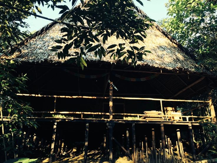 Maya Retreat is a plant medicine based healing centre situated in the rainforest 21 Km. from the city of Iquitos. We work primarily with Ayahuasca, Tobacco and S.Pedro and we also offer Kambo'/Sapo treatment. Isidoro Conde Acho, of the Yagua people, was born in Masan on the river Napo one hour from Iquitos. He is read more