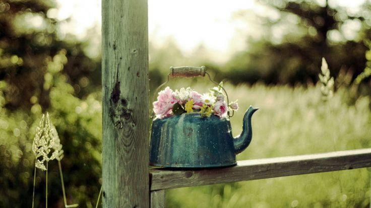 5 ideas para decorar el jardín con teteras viejas