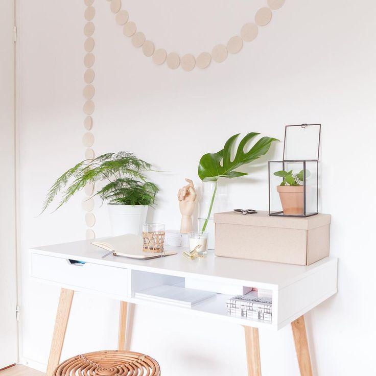 Scandinavian Designinterior Plant