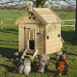 Website with chicken coops for sale expensive but good for Fancy chicken coops for sale