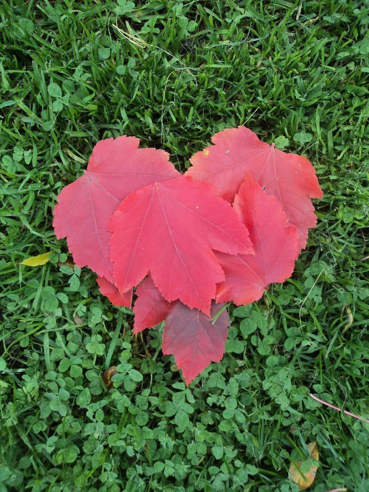 Love autumn!