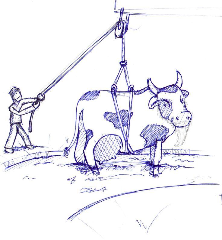 Oude koeien uit de sloot halen
