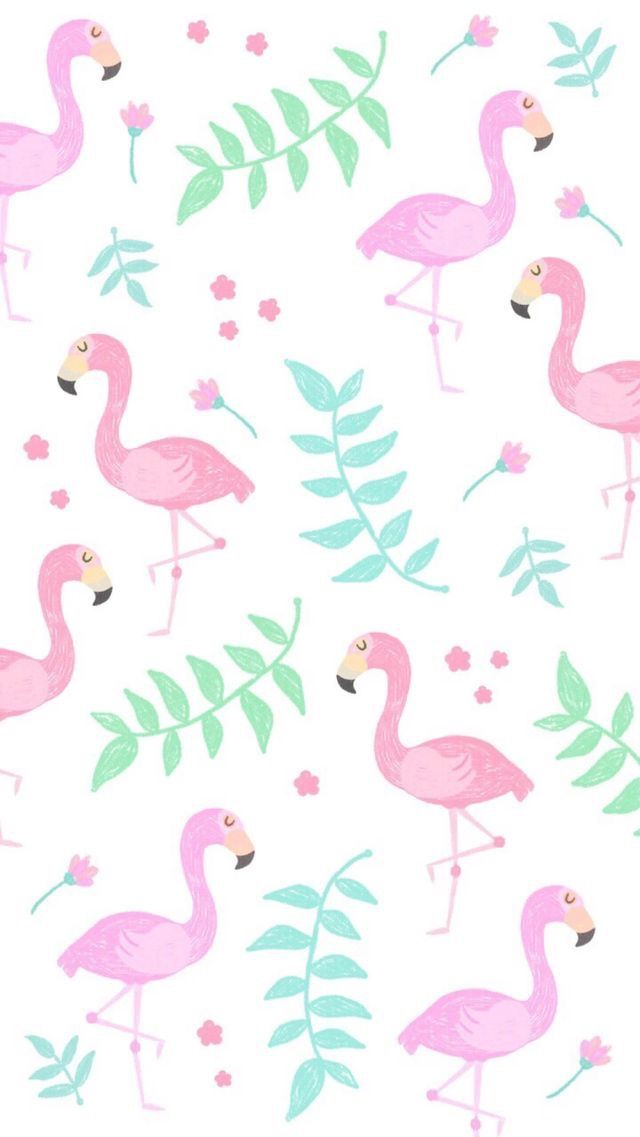 Pin By Jehan Macud On Wallpaper With Images Flamingo Wallpaper