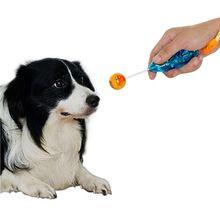 Nieuwigheid Rekbaar Ontwerp Pet Training Clicker Hond Kat Agility Training Clickers Vogel Fluitje Commander Levert Accessoire 2016(China (Mainland))