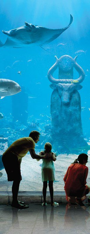 Atlantis Resort Bahamas as part of our Bahamas Vacations and Resort Reviews for family, all inclusive, and honeymoon travel. # Bahamas  #Resort  #Wedding  #honeymoon #Atlantis http://www.luxury-resort-bliss.com/atlantis-resort-bahamas.html  http://www.luxury-resort-bliss.com/bahamas-luxury-resort.html http://www.luxury-resort-bliss.com/bahamas-family-resorts.html http://www.luxury-resort-bliss.com/bahamas-all-inclusive-resorts.html