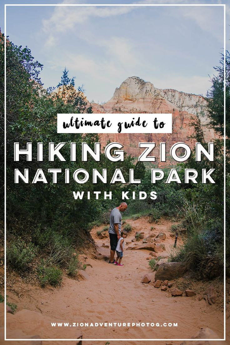 The Ultimate Quick Guide to Hiking Zion with Kids …