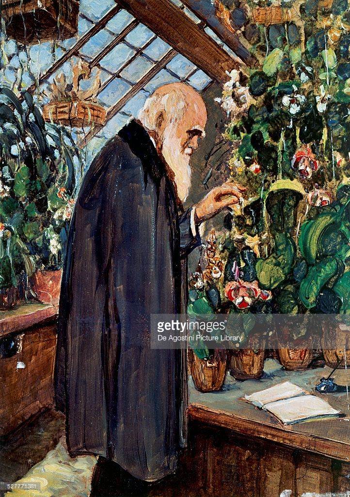 an introduction to the life of charles robert darwin Evolution home: darwin's early life  charles robert darwin was born on february 12, 1809 in shrewsbury, england his parents were dr robert and susannah darwin.