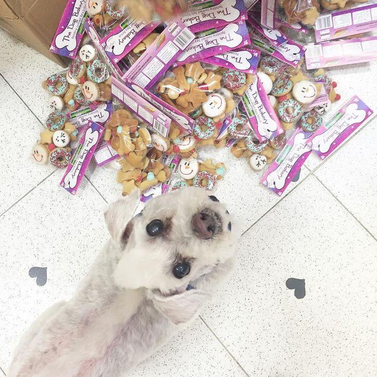 Confirmo que llegó completo el pedido de galletas de Navidad.